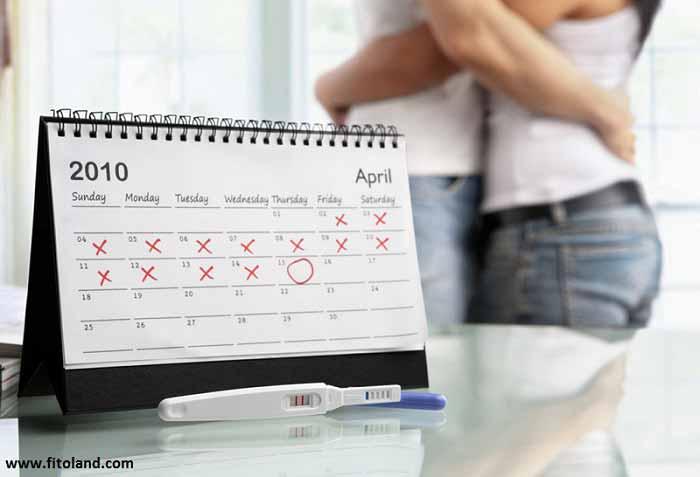 انتخاب بهترین زمان بارداری در چرخه قاعدگی زنان