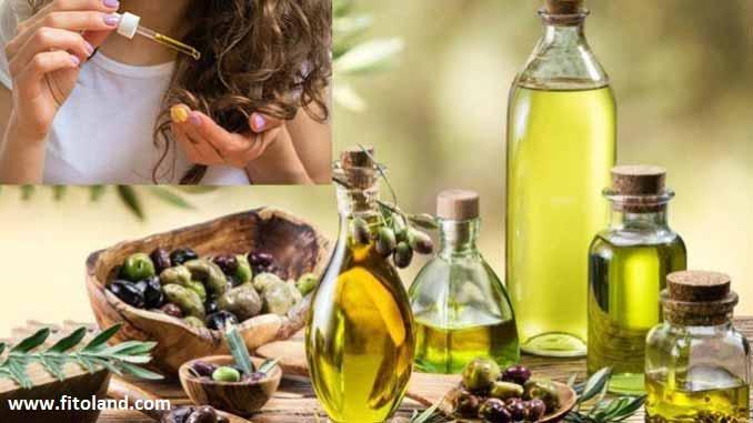 روغن درخت چای و تاثیر آن بر سلامت مو و جلوگیری از شوره سر