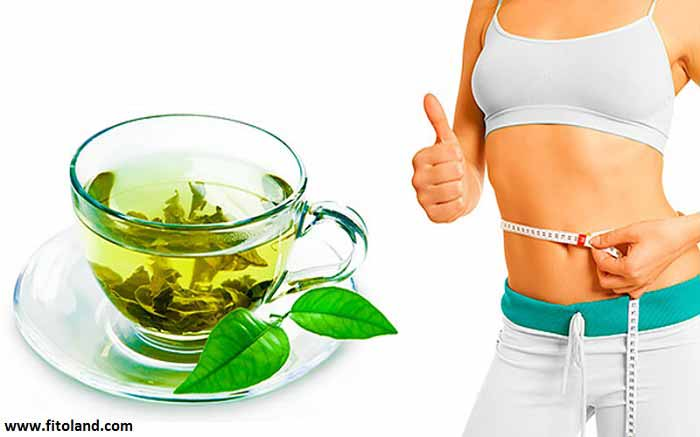 Increased-Metabolism-And-Slim-Fast-With-Drinking-Green-Tea