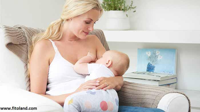 Neonatal-Jaundice-And-Breastfeeding