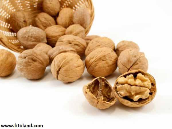Fatty-Acids-Omega3-Walnut