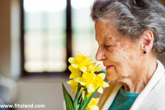Natural-Remedy-For-Alzhiemer-Aromatherapy