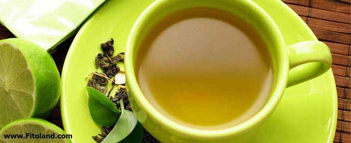 چای سبز یک ویتامین برای لاغری و کاهش وزن