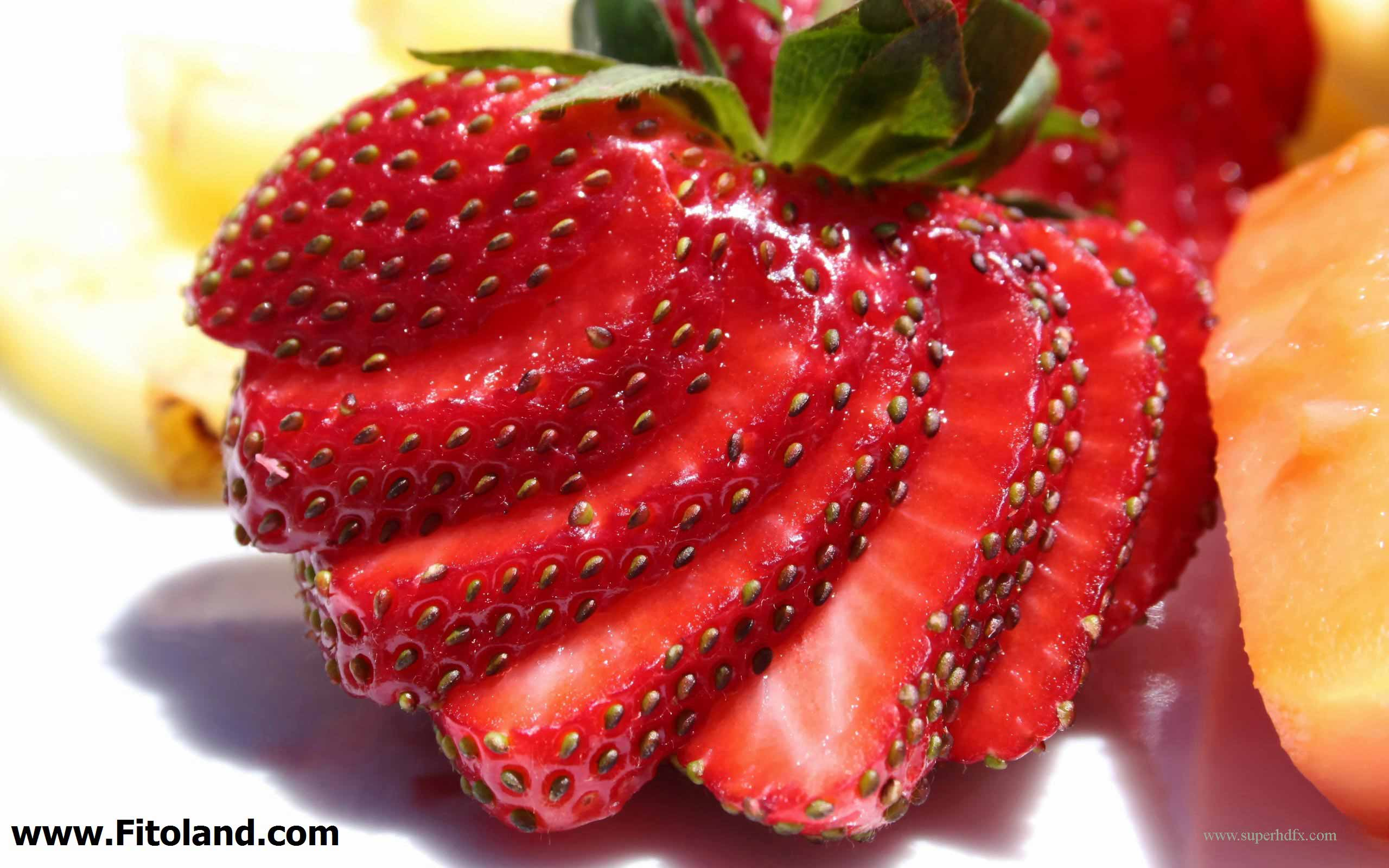 انواع توت، از بهترین غذاها برای سلامت مو
