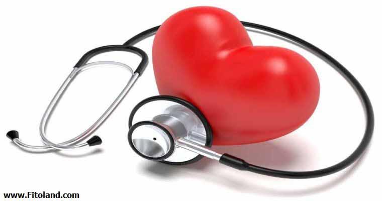 سلامتی قلب و عروق با تمرین زومبا