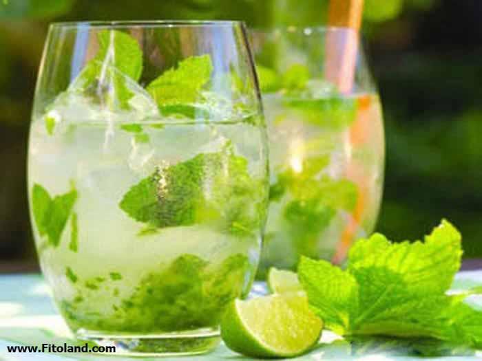 نوشیدنیهای تهیه شده از نعنا در ماه رمضان