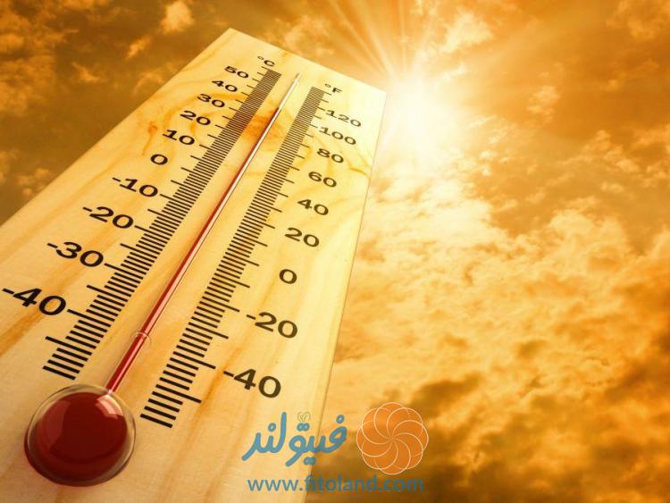 راه های مقابله با خطرات افزایش دما