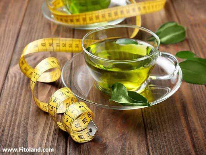 چای سبز تغذیه مناسب بعد از ورزش برای لاغری