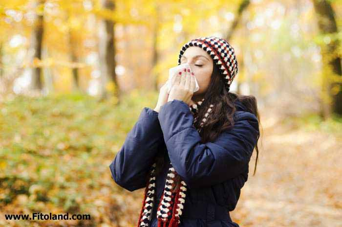 درمان حساسیت پاییزی با شناخت علائم حساسیت پاییزی