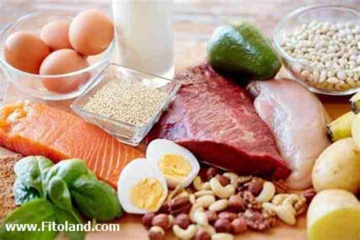 لاغری سریع پس از زایمان با مصرف پروتئین