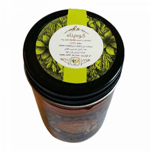 عسل طبیعی گون کوهپناه
