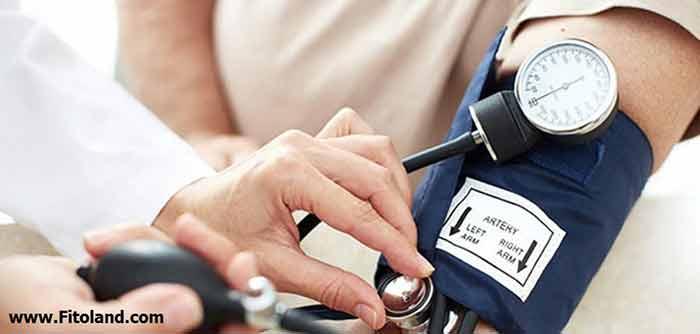 پودر قارچ گانودرما و فشار خون بالا