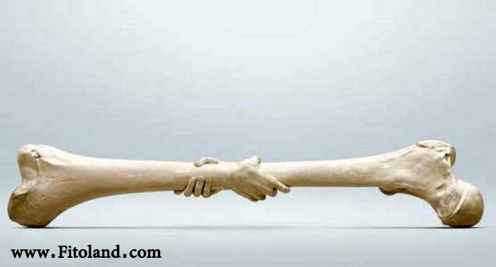 علائم پوکی استخوان و علت پوکی استخوان