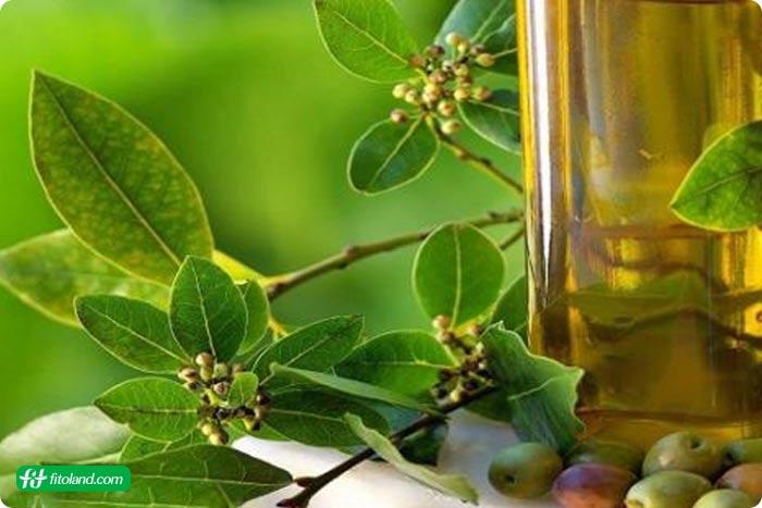 درمان طبیعی زونا در کنار درمان بیماری زونا برای کاهش علایم زونا مانند بثورات پوستی