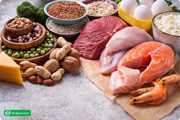 رژیم پالئو یکی از انواع بهترین رژیم لاغری به عنوان رژیم غذایی برای لاغری و رژیم غذایی کاهش وزن