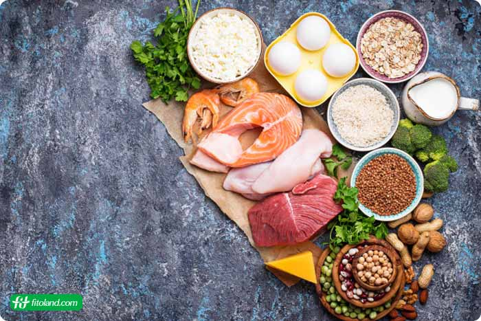 رژیم پر پروتئین
