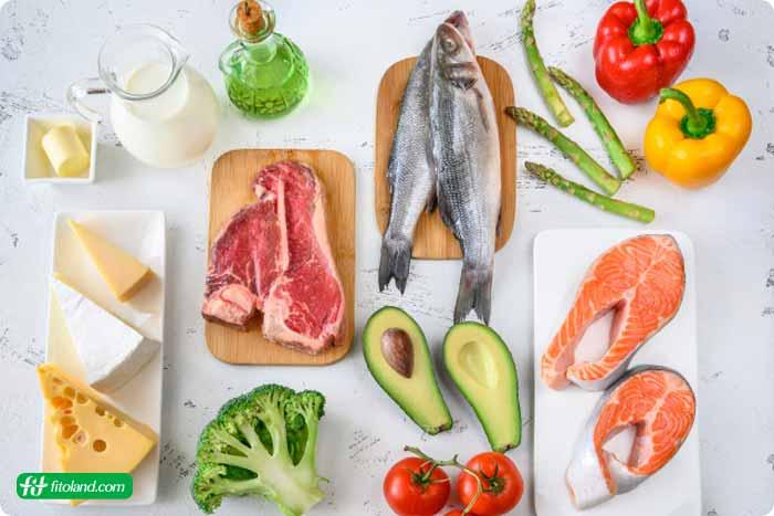 انواع رژیم غذایی کتوژنیک