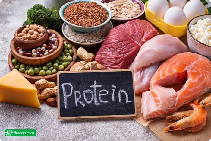 معرفی رژیم غذایی پر پروتئین