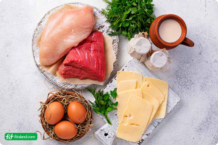انواع رژیم غذایی پر پروتئین