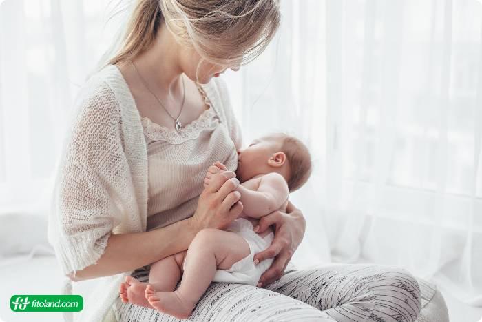 رژیم غذایی برای مادران شیرده