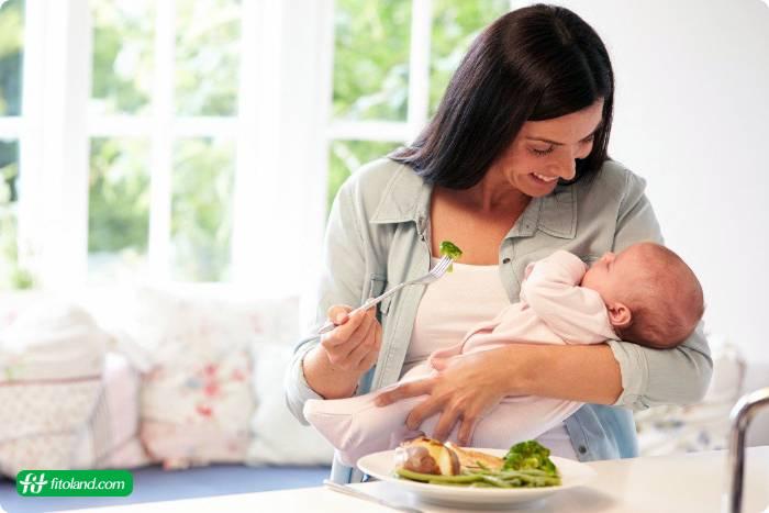 برنامه رژیم غذایی دوران شیردهی