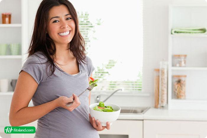 برنامه رژیم غذایی مادر قبل از بارداری