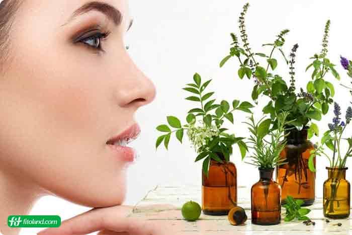 درمان طبیعی اگزما