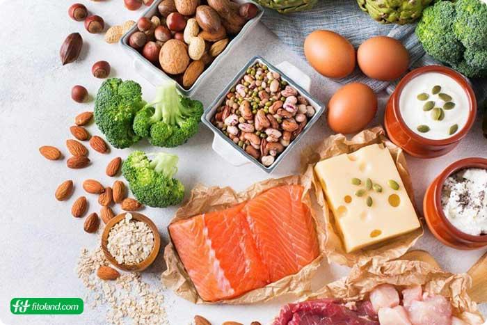 مصرف پروتئین در بارداری