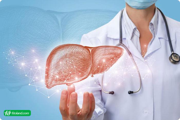 برنامه رژیم غذایی درمان کبد چرب